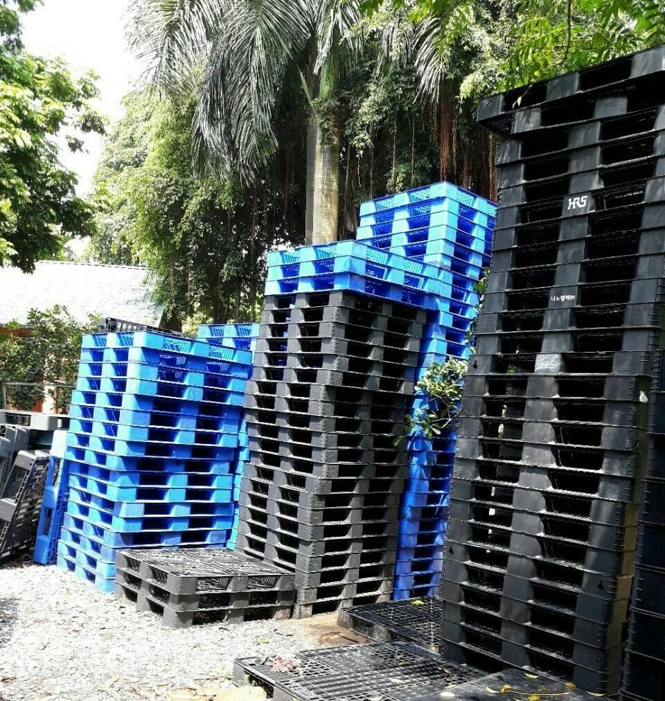0906193788 pallet nhua ha noi 59df859889be9 - Một số sai lầm khi đi mua pallet nhựa mà thường xuyên gặp phải