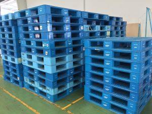 pallet nhua binh duong 300x225 300x225 - Cho thuê pallet nhựa cũ, pallet nhựa cũ, khay nhựa công nghiệp giá rẻ