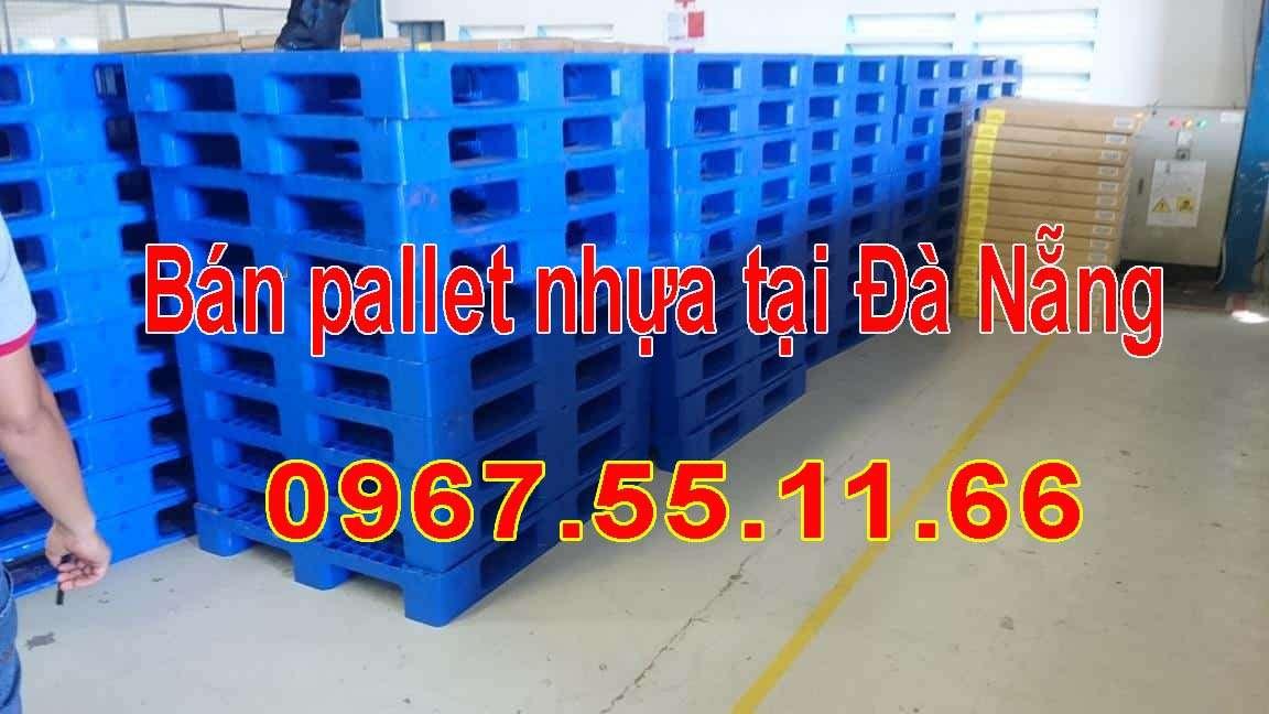 24 min 1 - Nên mua pallet nhựa hay pallet giấy để dùng trong kho xưởng ?