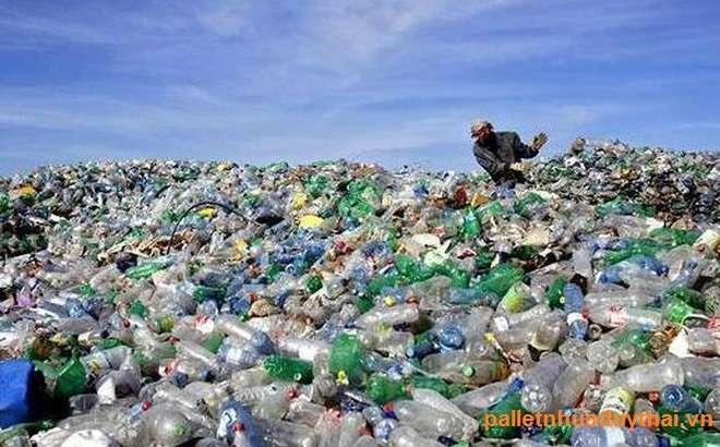 photo1539326192986 1539326192986679164294 - Vì sao các loài động vật trên biển phải ăn các loại rác thải nhựa