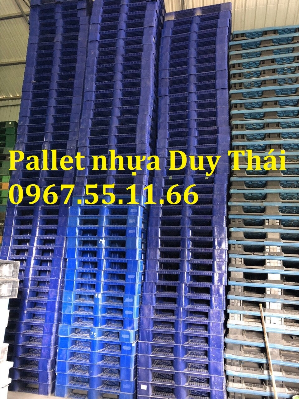 Bán pallet nhựa cũ tại Thái Nguyên giá rẻ tại kho